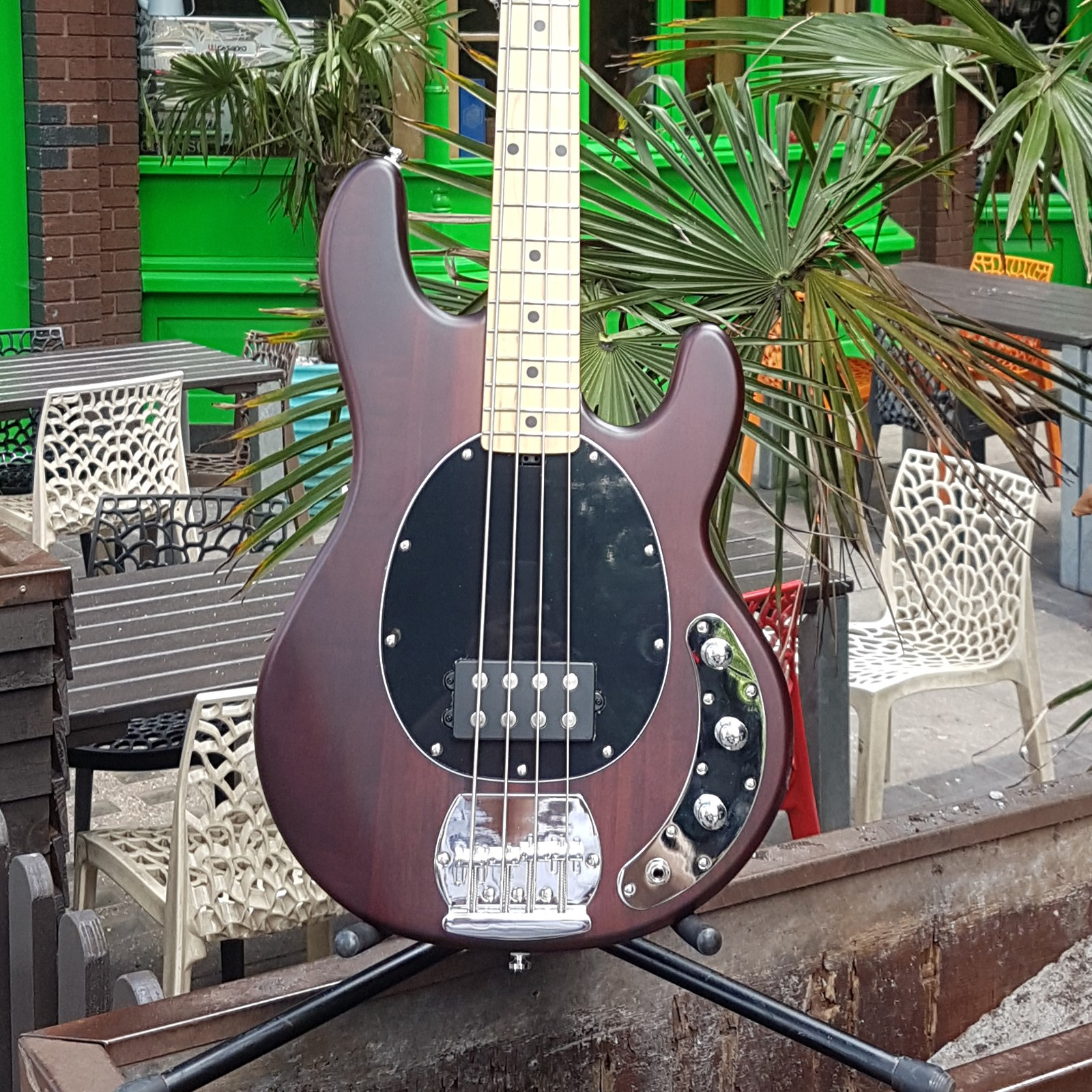 Musicman Sterling SUB RAY 4 Bass Guitar in Tr ....
